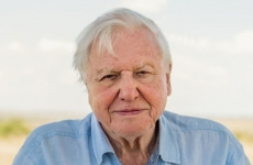 David Attenborough naturalist