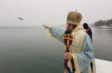 Episcopul Macarie al Europei de Nord