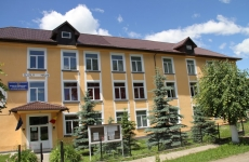"școala gimnazială ""Nicolae Labiș"""