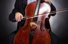 muzicant violoncel