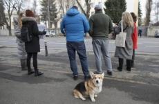 Inquam protestatari Ambasada Rusiei