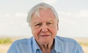 David Attenborough naturalist