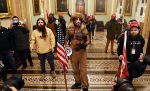 SUA bizon Capitoliu