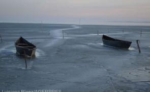 delta dunarii iarna