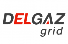 Delgaz Grid