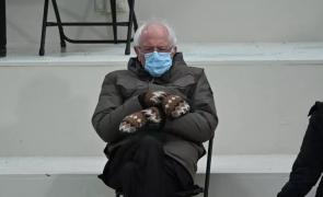 Mănuși Bernie