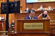 păpuși parlament