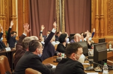 comisie comisii parlament sedinta