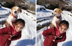 fetiță câine