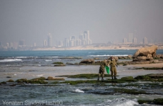 maree poluare Israel