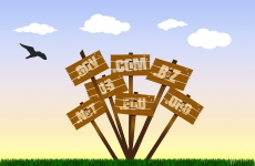 domenii internet domain names