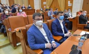 parlament plen deputat
