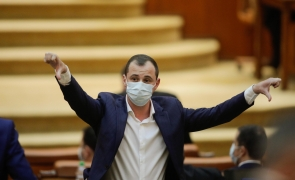 vot camera deputatilor Alfred Simonis Parlament