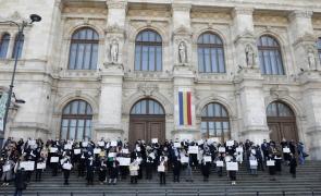 protest avocati