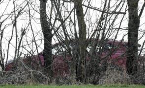 Austria crimă mașină