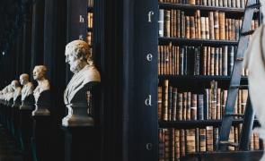 clasici biblioteca statui carti