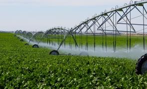 irigatii agricultura
