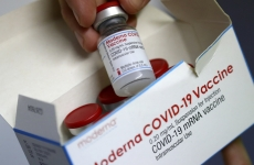 moderna vaccin covid
