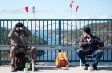 gemeni barbati pod calatorii norvegia suedia