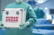 Organe umane transplant