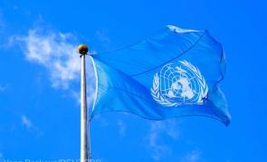 Trei agenţii din cadrul ONU au cerut o reorientare a măsurilor de sprijinire a agriculturii