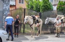 turisti pe cai