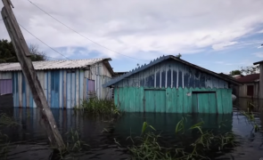 inundatii amazon rio negro