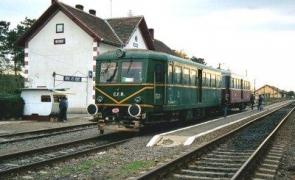 Gara Buzias tren