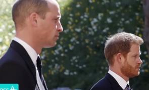 Printul Harry si printul William