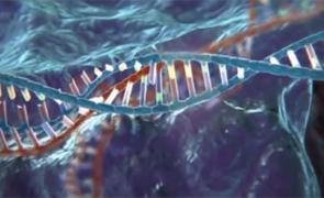 tehnologia CRISPR