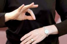 mimico gestual