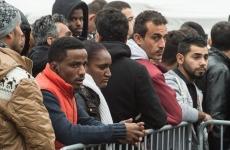 germania imigranti forta de munca