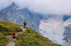 alergator munte