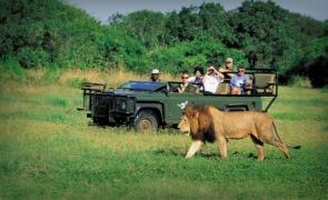 turism africa leu