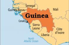 Guineea Conacry