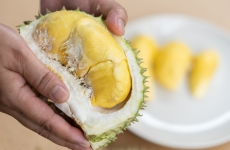 fruct durian