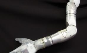brat bionic