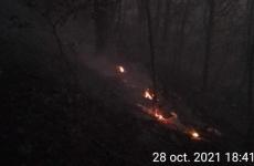 incendiu horezu